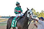 Jockey Ricardo Santana Jr. rode D. Wayne Lukas trained Silver Edition in the 61st King Cotton stakes at Oaklawn Park.