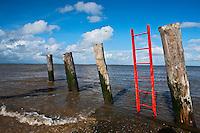 Europe/France/Aquitaine/33/Gironde/Estuaire de la Gironde/Jau: Echelle au ponton du Phare de Richard