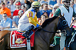 ARLINGTON HEIGHTS, IL - AUGUST 13: Danish Dynaformer #1, ridden by Patrick Husbands, during the post parade before Arlington Million at Arlington International Racecourse on August 13, 2016 in Arlington Heights, Illinois. (Photo by Jon Durr/Eclipse Sportswire/Getty Images)
