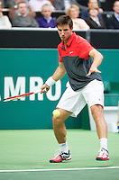 11-02-13, Tennis, Rotterdam, ABNAMROWTT, Igor Sijsling