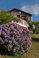 Europe/France/Aquitaine/64/Pyrénées-Atlantiques/Pays-Basque/Guéthary: Villa et Hortensias sur la corniche
