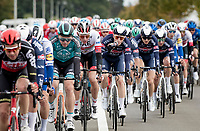 Farewel race for Kris Boeckmans (BEL/B&B - Vital Concept) > riding his very last pro race on home roads<br /> <br /> 108th Scheldeprijs 2020 (1.Pro)<br /> 1 day race from Schoten to Schoten BEL (173km)<br /> <br /> ©kramon