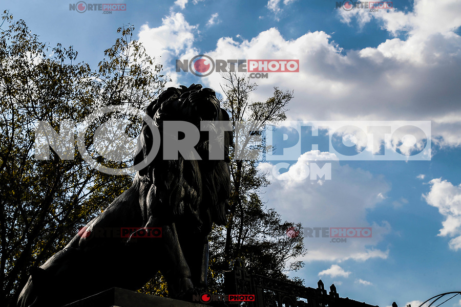 statue or sculpture with lion's name. in the forest of Chapultepec. urban park in Mexico City. (Foto Luis Gutierrez /NortePhoto.com)<br /> estatua o escultura con foma de leon. en el bosque de Chapultepec. parque urbano  en la Ciudad de México.<br /> estatua o escultura con foma de leon. en el bosque de Chapultepec. parque urbano  en la Ciudad de México.