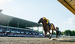 OCEANPORT, NJ - JULY 29: Good Magic, #6, ridden by Jose Ortiz, wins the Haskell Invitational Stakes on Haskell Invitational Day at Monmouth Park Race Course on July 29, 2018 in Oceanport, New Jersey. (Photo by Scott Serio/Eclipse Sportswire/Getty Images)