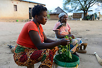ZAMBIA, Mazabuka, Chikankata area, medium scale farmer Stephen Chinyama, homestead, woman prepare food