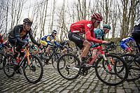 Tiesj Benoot (BEL/Sunweb) up the Mont Saint-Laurent<br /> <br /> 72nd Kuurne-Brussel-Kuurne 2020 (1.Pro)<br /> Kuurne to Kuurne (BEL): 201km<br /> <br /> ©kramon