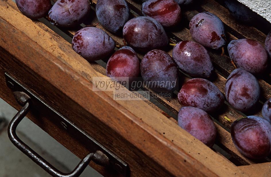 Europe/France/Aquitaine/47/Lot-et-Garonne/Grange-sur-Lot: Musée du pruneau - Evaporateur à tiroirs destiné à sécher les prunes