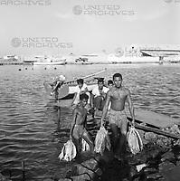 Jungen tragen Fische aus dem Rio Manzanares in Cumaná ans Ufer, Venezuela 1966. Boys carry fish out of the Rio Manzanares in Cumaná onshore, Venezuela 1966.