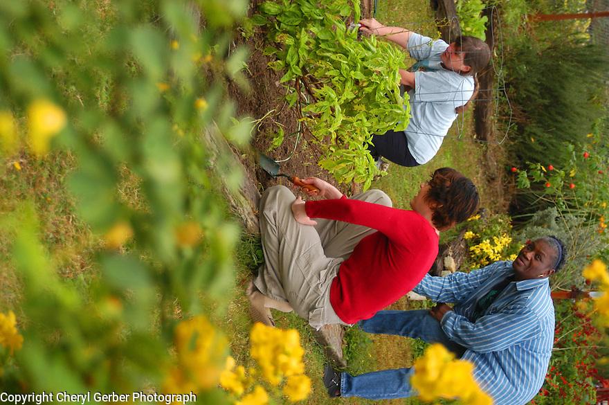 Judy Schwartzer, garden coordinator, Mary Mitchell, Fauborg Delachaise neighborhood Association vice president, and Alexis Annis garden in Le Jardin du Soleil.