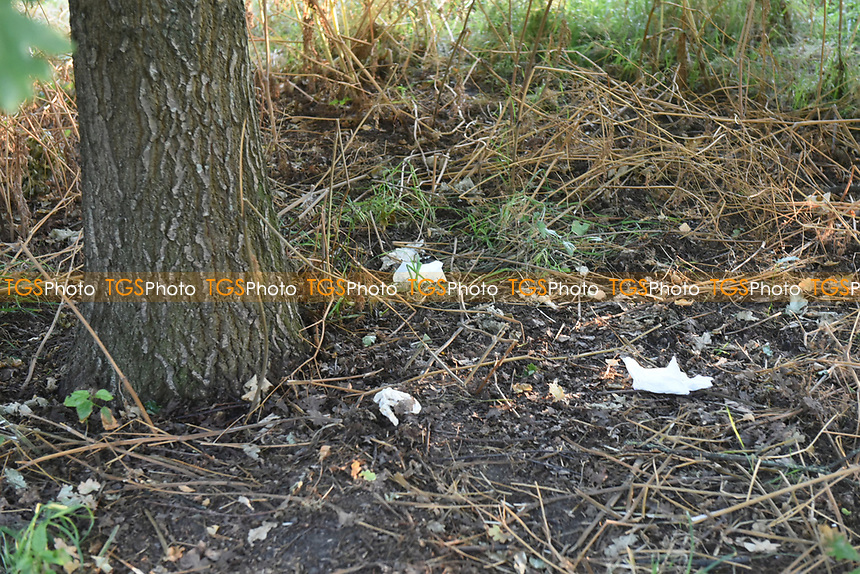 Rubbish left behind after members of the public enjoy the warm weather in Regents Park during the coronavirus pandemic
