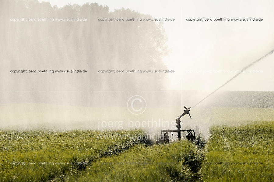 Germany farm irrigation in grain field / DEUTSCHLAND Bewaesserungsanlage im Getreidefeld