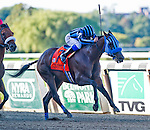 September 27, 2014: Private Zone (7, black and blue cap), ridden by Martin Pedroza, wins the Vosburgh Stakes on Jockey Club Gold Cup Day at Belmont Park Race Track in Elmont, New York. Scott Serio/ESW/CSM
