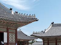 im Palast  Gyeongbukgung in Seoul, Südkorea, Asien<br /> inside throne palace Gyeongbukgung in Seoul, South Korea, Asia