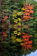 Ballard State Forest - Reflection of autumn in Ballard Pond in Derry, New Hampshire USA.