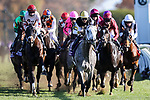 November 7, 2020 :Horses race during the FanDuel Mile presented by PDJF on Breeders' Cup Championship Saturday at Keeneland Race Course in Lexington, Kentucky on November 7, 2020. Wendy Wooley/Breeders' Cup/Eclipse Sportswire/CSM