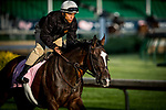 LOUISVILLE, KY - MAY 03: Paradise Woods with exercise rider Alex Bisono gallops at Churchill Downs on May 03, 2017 in Louisville, Kentucky. (Photo by Alex Evers/Eclipse Sportswire/Getty Images)