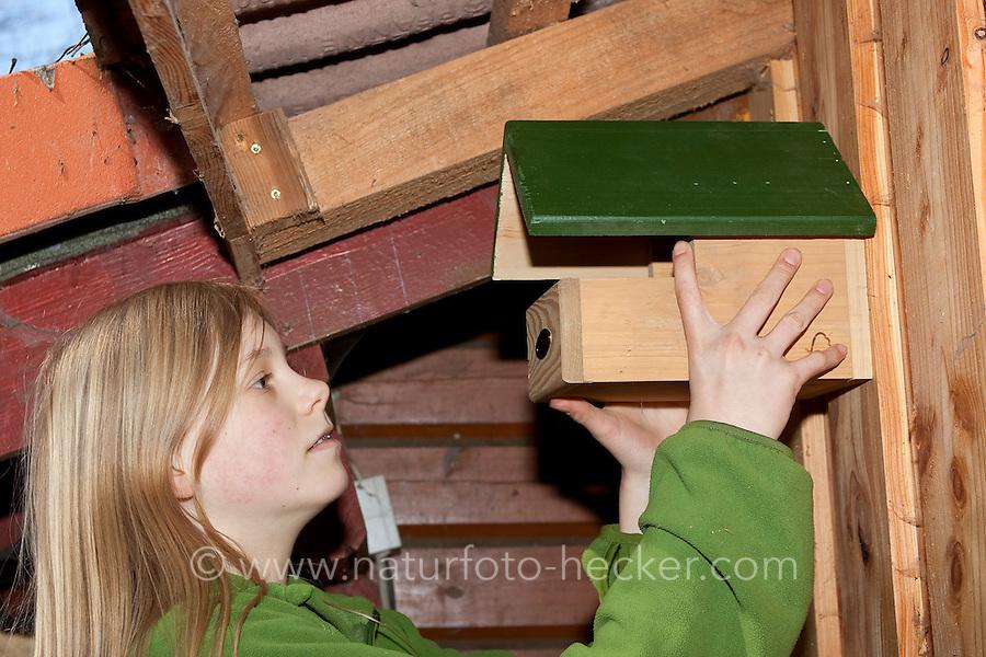 Anbringung eines Vogel-Nistkasten unter dem Dachvorstand eines Schuppens, Halbhöhle, Halbhöhlenbrüter