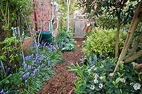 Mulched path through side yard, small space sustainable garden with rain barrel; Jennifer Carlson garden