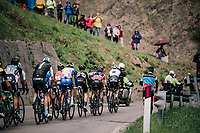 Maglia Rosa / overall leader Simon Yates (GBR/Mitchelton-Scott) in the peloton up the Passo di Sant'Antonio<br /> <br /> stage 15: Tolmezzo – Sappada (176 km)<br /> 101th Giro d'Italia 2018