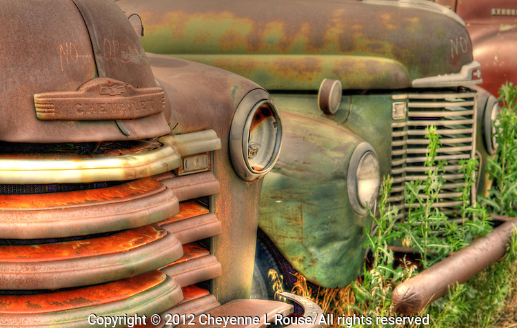 Classic old truck hoods in New Mexico on Route 66