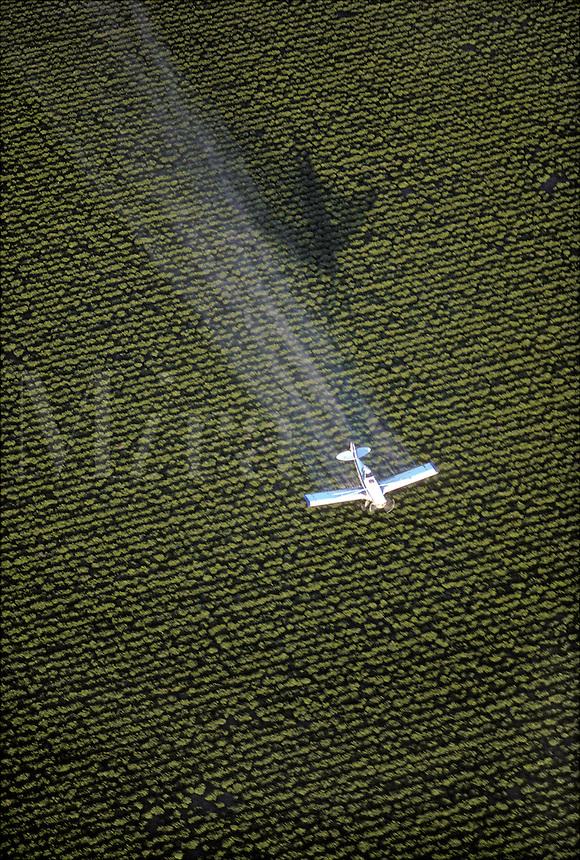 Crop Dusting, Antioch, California