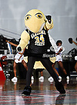 The Alabama State Hornets mascot in action during the SWAC Tournament game between the Alabama State Hornets and the  Alabama A&M Bulldogs at the Special Events Center in Garland, Texas. Alabama State Hornets defeat Alabama A&M Bulldogs 81 to 61