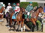 October 13, 2015:  Camelot Kitten in the post parade for the Bourbon Stakes at Keeneland on  10/04/15.  Candice Chavez/ESW/CSM