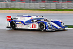 Anthony Davidson (8), Toyota Racing driver in action during the ALMS/WEC practice sessions at the Circuit of the Americas race track in Austin,Texas.