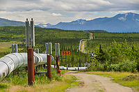 The trans Alaska oil pipeline stretches across the tundra through the Alaska mountain range, Interior, Alaska