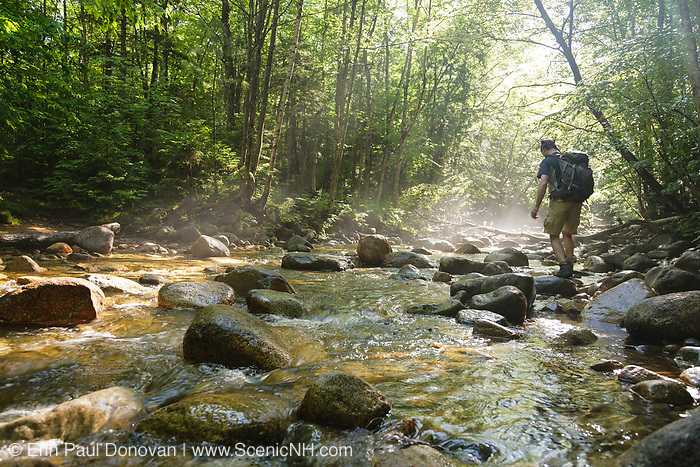"""Hiker in morning fog crossing Cedar Brook, along the Pemi East Side Trail, during the summer months in the 45,000-acre federally designated """"Pemigewasset Wilderness"""" in Lincoln, New Hampshire. This area was logged during the East Branch & Lincoln Railroad (1893-1948)."""