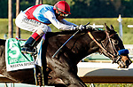 """ARCADIA, CA  OCTOBER 2: #5 Medina Spirit, ridden by John Velazquez, wins the Awesome Again (Grade 1) Breeders Cup """"Win and You're In Classic Division"""" on October 2, 2021 at Santa Anita Park in Arcadia, CA.(Photo by Casey Phillips/Eclipse Sportswire/CSM)"""