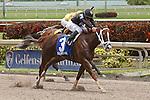 HALLANDALE BEACH, FL -JULY 02:  #3 Dearest (KY) with jockey Emisael Jaramillo on board wins the Azalea Stakes at Gulfstream Park on July 02, 2016 in Hallandale Beach, Florida. (Photo by Liz Lamont/Eclipse Sportswire/Getty Images)