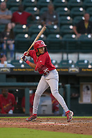 Palm Beach Cardinals Donivan Williams (25) bats during a game against the Bradenton Marauders on May 29, 2021 at LECOM Park in Bradenton, Florida.  (Mike Janes/Four Seam Images)