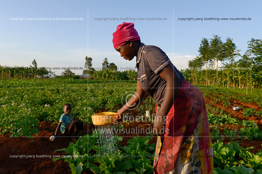 TANZANIA, Tarime District, village Kewamaba, farmer irrigates vegetable field / TANSANIA, Kleinbauer bewaessert den Gemuesegarten am Abend  - Nutzung nur fuer redaktionelle Zwecke, Kein PR !