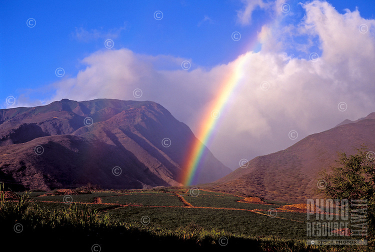 Sugar cane fields and mountains with a rainbow at Olowalu, Maui.