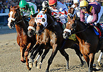 10 August 28: First Dude (no. 4) vies for the early lead as they cross the wire the first time before Afleet Express (no. 7), ridden by Javier Castellano and trained by James Jerkens, wins the 141st running of the grade 1 Travers Stakes for three year olds at Saratoga Race Track in Saratoga Springs, New York.