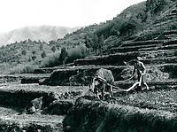 Landwirtschaft in Sunchon, Korea 1977