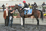 """Boisterous, ridden by Jose Lezcano win the 53rd running of the Knickerbocker Stakes (GIII) for 3-year olds & up, going 1 1/8  mile on the inner turf at Belmont Park, Elmont, New York. TrainerClaude """"Shug"""" McGaughey. Owner Phipps Stable."""