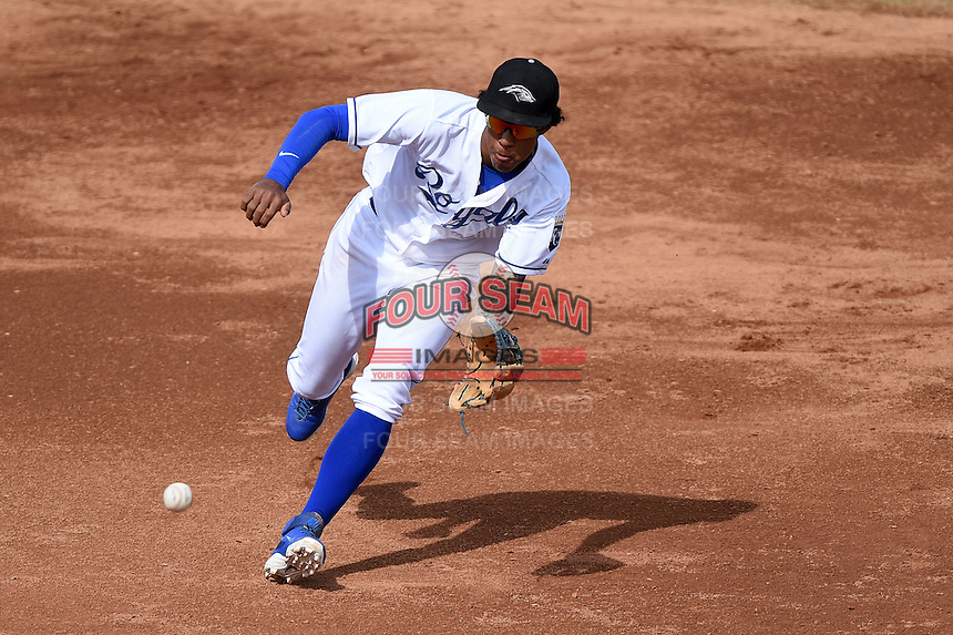 Peoria Javelinas shortstop Raul Mondesi (1) during an Arizona Fall League game against the Scottsdale Scorpions on October 18, 2014 at Surprise Stadium in Surprise, Arizona.  Peoria defeated Scottsdale 4-3.  (Mike Janes/Four Seam Images)