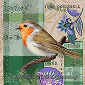 Isabella, REALISTIC ANIMALS, REALISTISCHE TIERE, ANIMALES REALISTICOS, paintings+++++,ITKE066164S-L,#a#, EVERYDAY ,collage