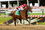 BALTIMORE, MD - MAY 20:  Go Maggie Go #5  with Brian Hernandez aboard. wins the 92nd running of the Black Eyed Susan at Pimlico Racecourse on May 20, 2016, in Baltimore, MD. (Photo by Sue Kawczynski/Eclipse Sportswire/Getty Images)