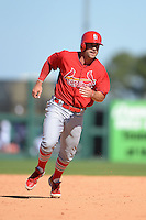 St. Louis Cardinals second baseman Greg Garcia (79) during a spring training game against the Detroit Tigers on March 3, 2014 at Joker Marchant Stadium in Lakeland, Florida.  Detroit defeated St. Louis 8-5.  (Mike Janes/Four Seam Images)