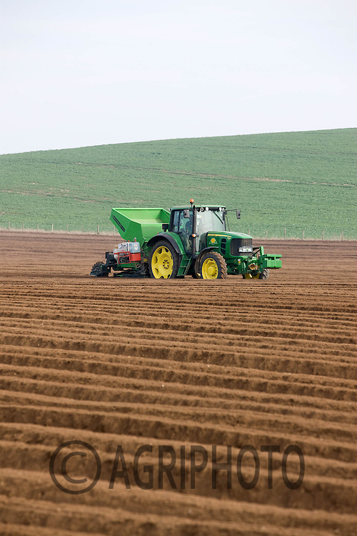 Planting potatoes on Russell Smith Farms,Duxford,.Cambridgeshire.Picture by Tim Scrivener date taken 14th March 2012.mobile 07850 303986 e-mail tim@agriphoto.com.....covering agriculture in The United Kingdom....