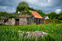 Old stone house and barn. County Clare, Ireland