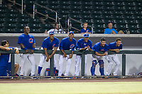 Members of the AZL Cubs cheer during a game against the AZL Giants on September 6, 2017 at Sloan Park in Mesa, Arizona. AZL Giants defeated the AZL Cubs 6-5 to even up the Arizona League Championship Series at one game a piece. (Zachary Lucy/Four Seam Images)