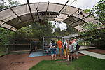Visitors inside the Tolga Bat Hospital aviary to learn more about the conditions of flying foxes.