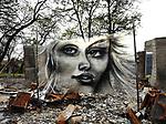 Shane Grammer mural Forty Oaks LN Paradise CA