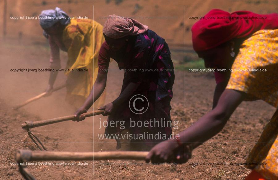 INDIA Tamil Nadu Nilgiri, land labourer with pickaxe at fieldwork in the Nilgiri Mountains / INDIEN Tamil Nadu Nilgiris, Frauen bearbeiten den Boden mit einer Hacke
