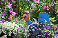 Whimsical rooster folk art in California raised bed garden with flowers; MUST CREDIT: Elvin Bishop Garden
