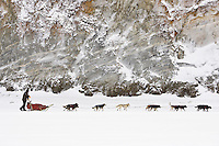 Lance Mackey runs down the Yukon river shortly after leaving Ruby on Friday during the 2008 Iditarod